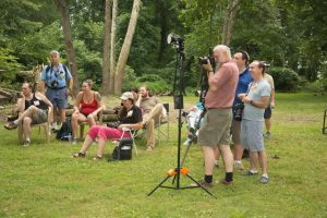 Summer Photography Shootout